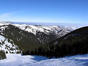Ledenice: Spada u veoma teške staze. U sezoni 2011/2012. ski lift Ledenice je, na radost svih skijaša, posle punih 18 godina ponovo u funkciji. Poslednja