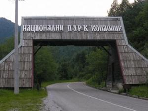 Nacionalni park Kopaonik prostire se na najvišim i najočuvanijim delovima planine Kopaonik, koja se uzdiže u središnjem delu južne Srbije. Zaštićen je