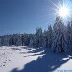 zima (150)