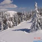 zima (246)