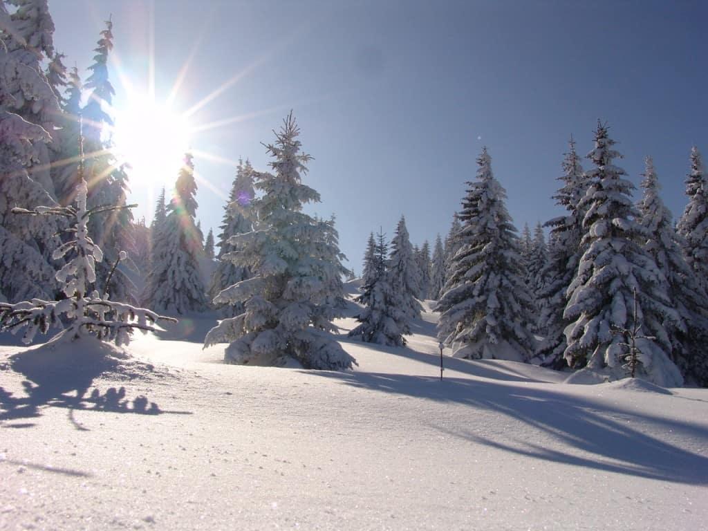 Sretenjski praznici – Kopaonik zove – Ljubitelji snega požurite