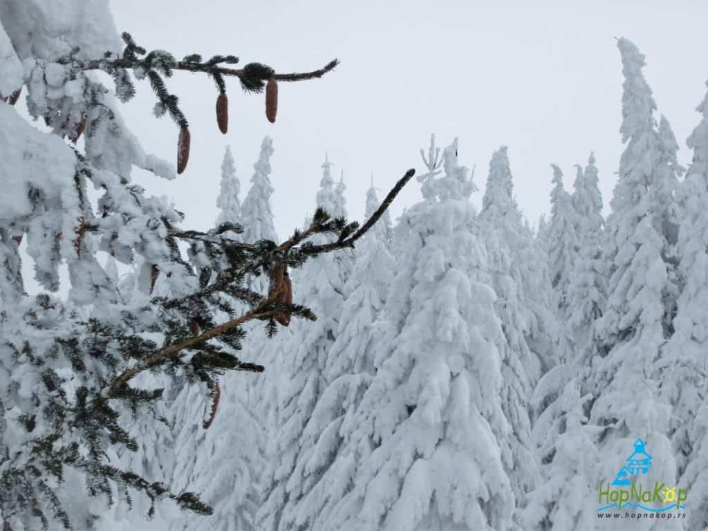 Od sutra na Kopaoniku vetar, pad temperature i sneg