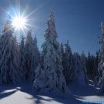 zima (151)