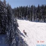 zima (241)